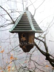95000 BIRDHOUSE IN FOG